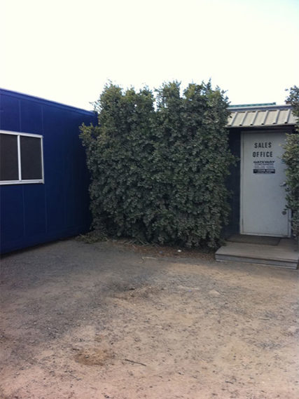 Shipping container portable office
