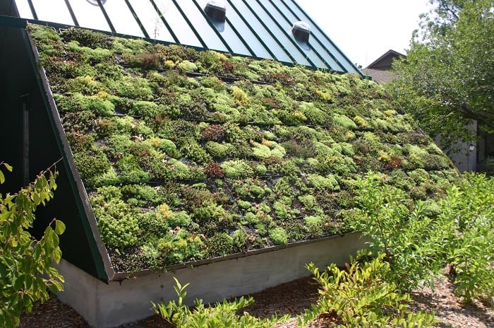 Off-grid gardening - Green Roof