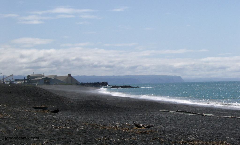 beach-in-the-mist-napier-nz1