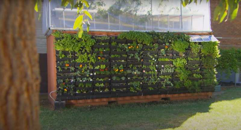 shipping-container-greenhouse1